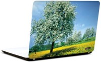 Pics And You Bloom And Blossom 8 3M/Avery Vinyl Laptop Decal (Laptops And MacBooks)