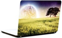 Pics And You Amazing Nature 18 3M/Avery Vinyl Laptop Decal (Laptops And MacBooks)