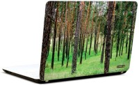 Pics And You In The Woods 10 3M/Avery Vinyl Laptop Decal (Laptops And MacBooks)