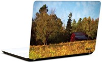 Pics And You Nature Themed 519 3M/Avery Vinyl Laptop Decal (Laptops And MacBooks)