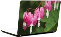 Pics And You Bloom And Blossom 10 3M/Avery Vinyl Laptop Decal (Laptops And MacBooks)