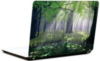 Pics And You In The Woods 8 3M/Avery Vinyl Laptop Decal (Laptops And MacBooks)