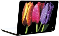 Pics And You Vivid Tulips Vinyl Laptop Decal (Laptops And Macbooks)