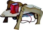 Junior Scientist Learning & Educational Toys Junior Scientist Chamelion
