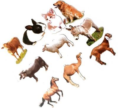 AIMEDU TOY Learning & Educational Toys AIMEDU TOY JUMBO CUTOUT PET ANIMAL