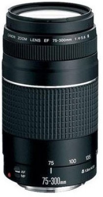 Buy Canon EF 75 - 300 mm f/4-5.6 III Lens: Lens