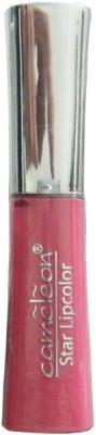 Cameleon Lip Glosses 5