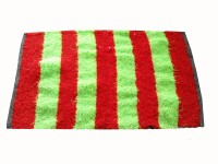 Mrignayaneei Cotton, Silk Medium Bath Mat Cotton Red, Parrot Green