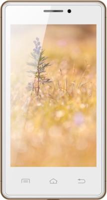 Karbonn A81 (White-Gold)