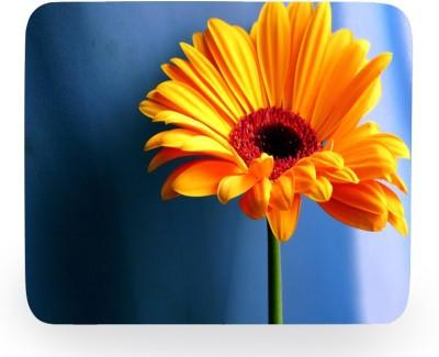 PhotogiftsIndia Orange Sunflower Mousepad