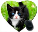 Awwsme Black And White Cat With Blue Eyes Heart Mousepad (Multicolour)