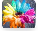 PhotogiftsIndia sunflower painting Mousepad