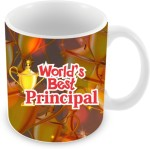 Everyday Gifts Plates & Tableware Everyday Gifts World's Best Principal Ceramic Mug