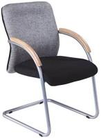 Mavi Metal Visitor Chair (Brand - Grey)