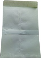 BoardRite Premium Unruled 12 Inches X 10 Inches Cloth Envelope (Set Of 100, Light Green)
