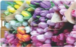 Via Flowers Llp Flowers VPC160058