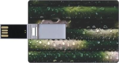 Via Flowers Llp Nature VPC160800 16 GB  Pen Drive (Multicolor)