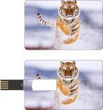 HD ARTS Tiger in Snow