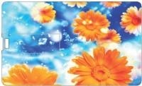 Printland 16GB Flowers 16 GB  Pen Drive (Multicolor)
