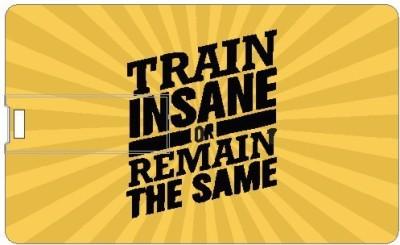 Printland Train Insane PC162253 16 GB  Pen Drive (Multicolor)