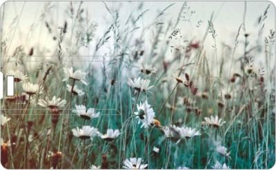 Printland Grass PC160206 16 GB  Pen Drive (Multicolor)