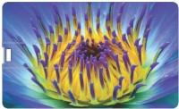 Printland 16GB Shell 16 GB  Pen Drive (Multicolor)