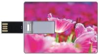 Printland 16GB Pink 16 GB  Pen Drive (Multicolor)