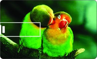 Printland Love Birds 8 GB Pen Drive for Rs  449 at Flipkart com