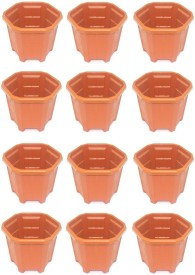 Rk Plant Container Set