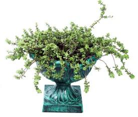 Karara Mujassme Victorian Style Fibre Antique Green Plant Container