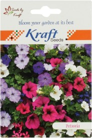 Kraft Seeds Petunia Multiflora F2 Colorama Mix Flower (Pack Of 20) Seed