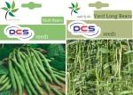 DCS Bush Beans & Yard Long Beans