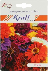 Kraft Seeds Zinnia Flower (Pack Of 20) Seed