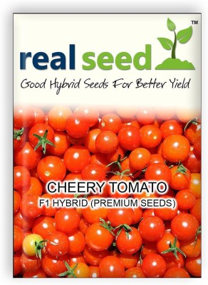 Real Seed Cheery Tomato F1 Hybrid Imported Vegetable Seeds