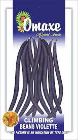 Omaxe CLIMBING BEANS PURPLE 25+ SEEDS PACK BY OMAXE Seed