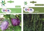 DCS Brinjal and Yard Long Beans