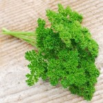 Omaxe Parsley Forest Green Triple Curled 100seeds*4pkts