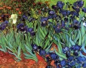 Irises [2] Large By Van Gogh Canvas - Large