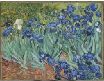 "Engrave Posters Irises by Van Gogh 30""x24"" Canvas Art"
