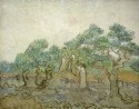 The Olive Orchard By Vincent Van Gogh Fine Art Print - Medium