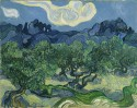 The Olive Trees By Vincent Van Gogh Fine Art Print - Large