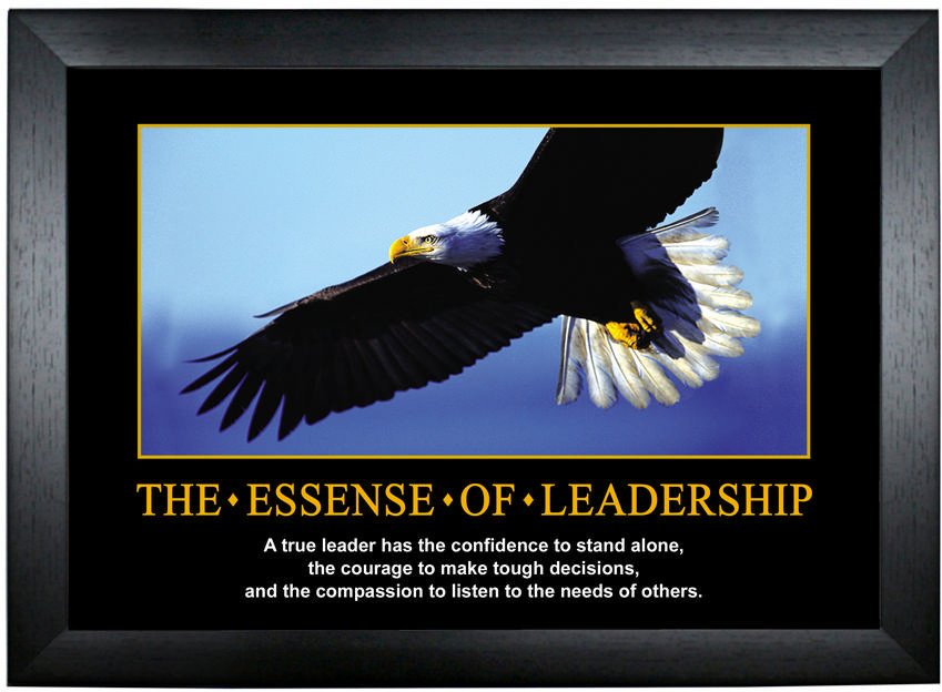 essence of leadership J post anesth nurs 1993 feb8(1):43-7 the essence of leadership: facing the challenge of being the new manager hannah ba to meet the challenge of.