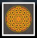 Sacred Geometry- The Flower Of Life 10 Fine Art Print - Medium