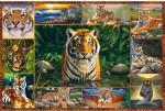 Ravensburger Puzzles Ravensburger Tiger