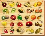 Kinder Creative Puzzles Kinder Creative Alphabet Fruits with Knobs
