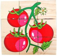 Qiaolinglong Colorful Wooden Block Picture Puzzle For Toddlers And Small Children (9 Pieces)
