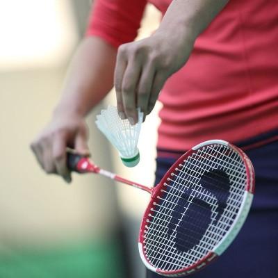 Artengo BR700 ADULT G4 Strung Badminton Racquet (Blue, Weight - 250 g)
