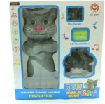 Aazo Remote Control Toys Aazo Talking Tom Cat