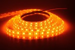 Noble 196.85 inch Orange Rice Lights
