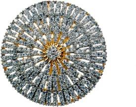 Uzuri Sparkling Copper Rhodium Ring